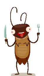 ワモンゴキブリくん