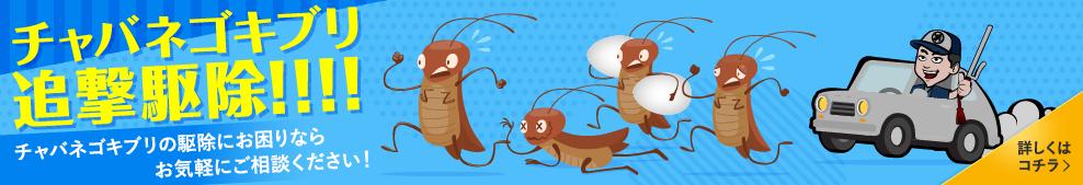 チャバネゴキブリ追撃駆除